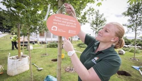 Manchester si tinge di verde grazie al progetto 'City of trees'